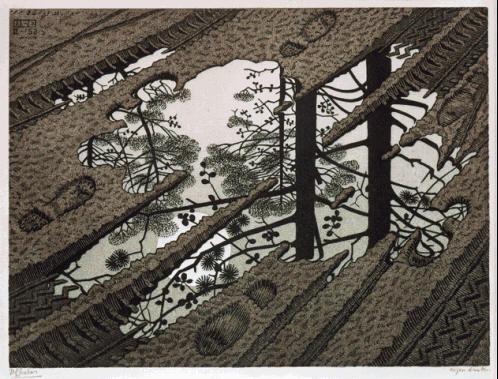 LW378-MC-Escher-Puddle-1952